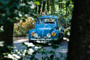 Blue Volkswagen in the woods